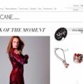 Интернет магазин женской одежды chiccane.com